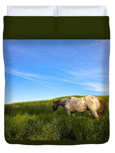 Appaloosa Field And Sky Duvet Cover