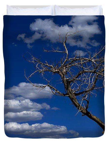 Apparition Duvet Cover by Skip Hunt