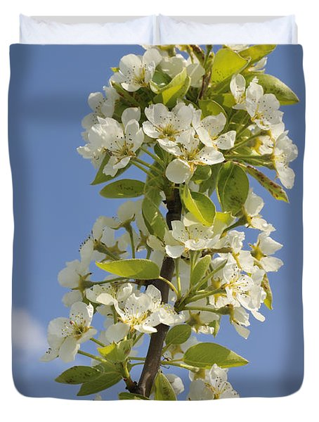 Apple Blossom In Spring Duvet Cover