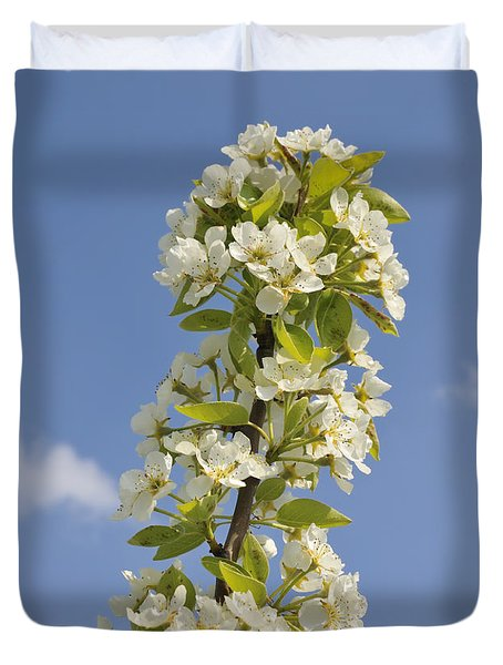 Apple Blossom In Spring Duvet Cover