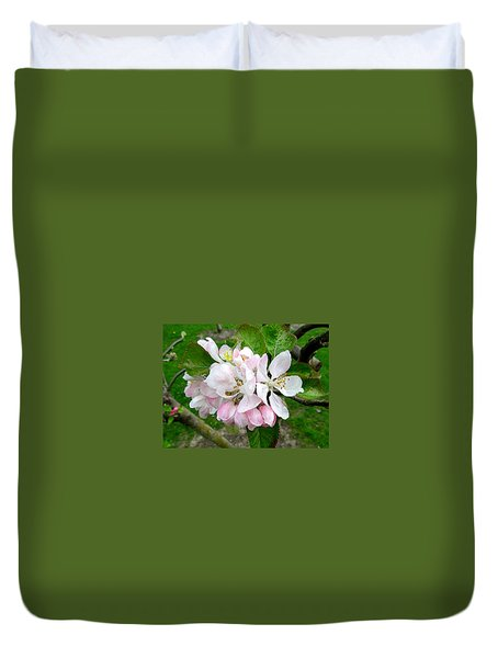 Apple Blossom Duvet Cover by Joyce Woodhouse