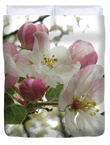 Duvet Cover featuring the photograph Apple Blossoms - Wild Apple by Angie Rea