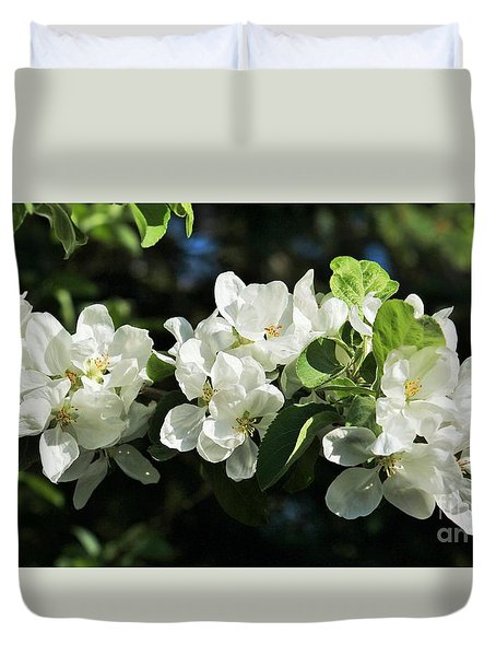Apple Blossoms 2017 Duvet Cover by Marjorie Imbeau