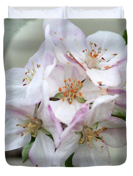 Apple Blossoms From My Hepburn Garden Duvet Cover