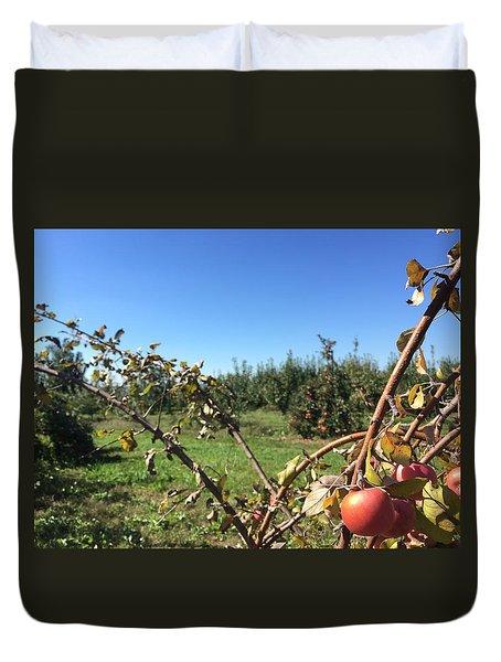 Apple Orchard 1 Duvet Cover