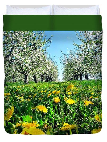 Apple Orchard, Nova Scotia, Annapolis Valley Duvet Cover