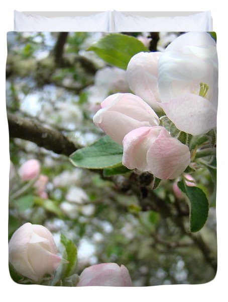 Apple Tree Blossoms Art Prints Apple Blossom Buds Baslee Troutman Duvet Cover by Baslee Troutman