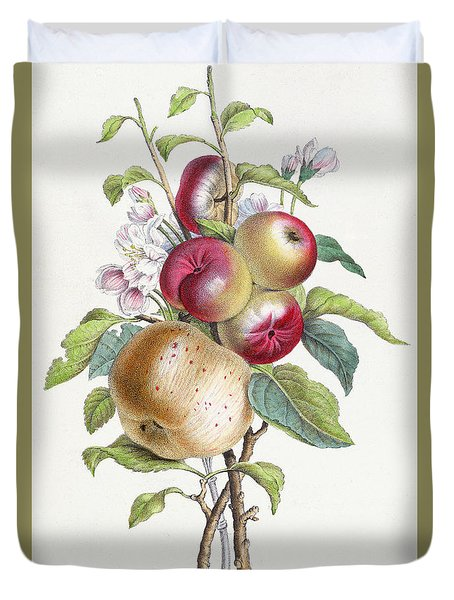 Apple Tree Duvet Cover