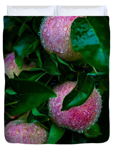 Apples After The Rain Duvet Cover