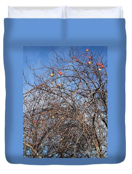 Apples In December Duvet Cover by Patricia E Sundik