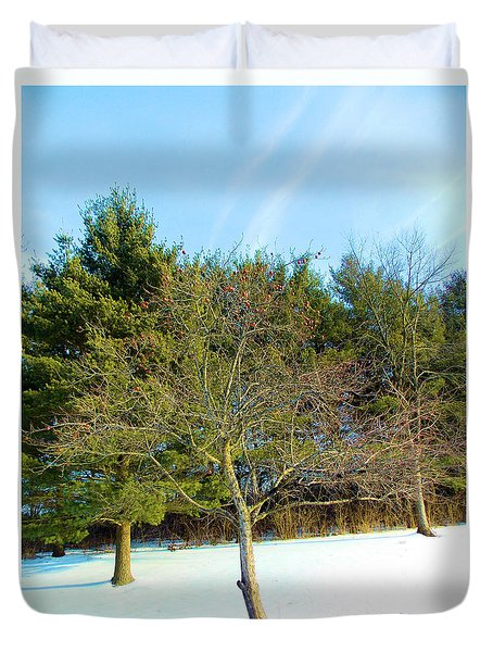 Duvet Cover featuring the painting Apples In Winter by Carolyn Repka