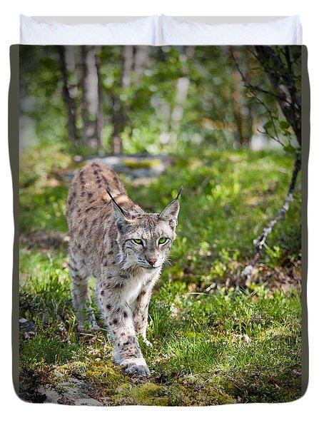 Approaching Lynx Duvet Cover