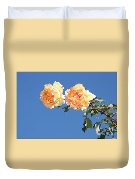 Apricot Rose Duvet Cover