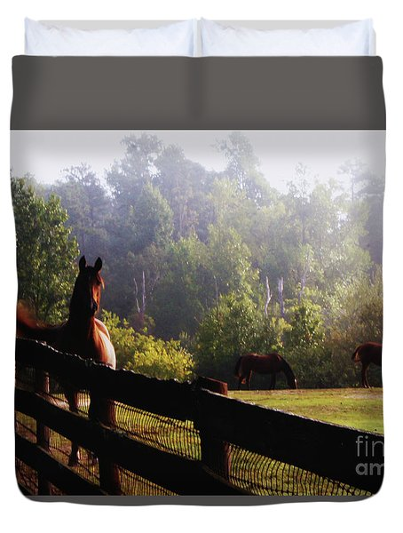 Arabian Horses In Field Duvet Cover