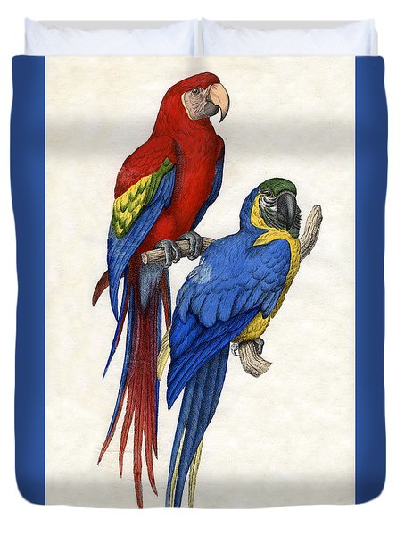 Aracangua And Blue And Yellow Macaw Duvet Cover