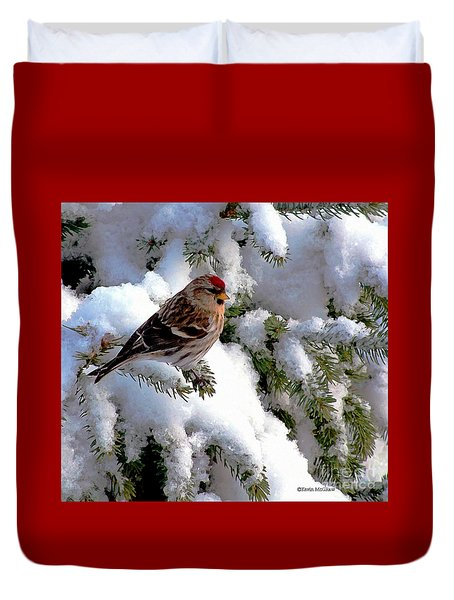 Duvet Cover featuring the photograph Arctic Finch On Snow Covered Branches by Kevin J McGraw