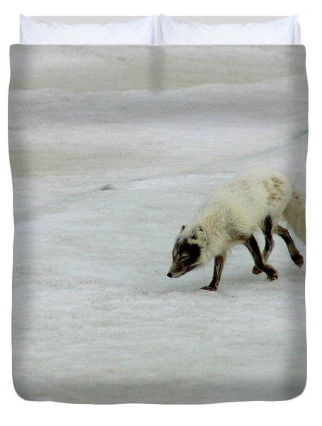 Arctic Fox On Ice Duvet Cover by Anthony Jones