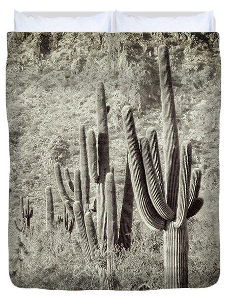 Arizona Desert 2 Duvet Cover