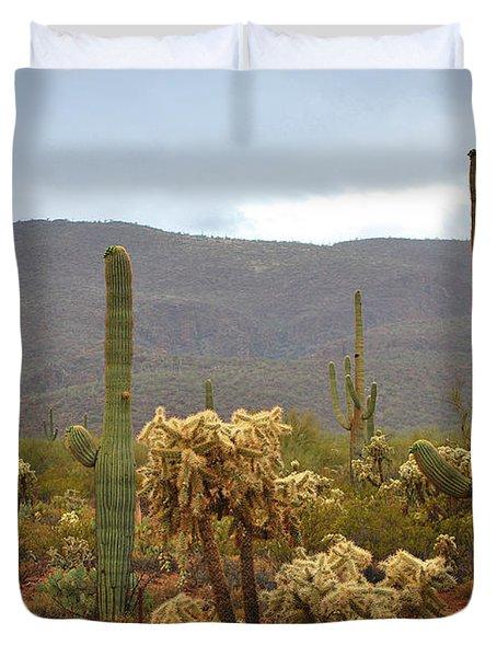 Arizona's Sonoran Desert  Duvet Cover by Donna Greene