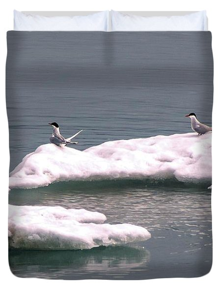 Arctic Terns On A Bergy Bit Duvet Cover