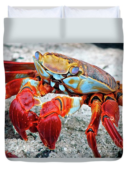 Artistic Nature Red And Blue Rainbow Crab 908 Duvet Cover