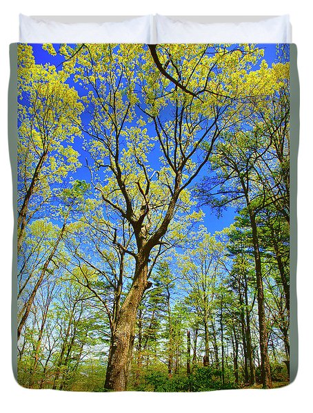 Artsy Tree Series, Early Spring - # 04 Duvet Cover