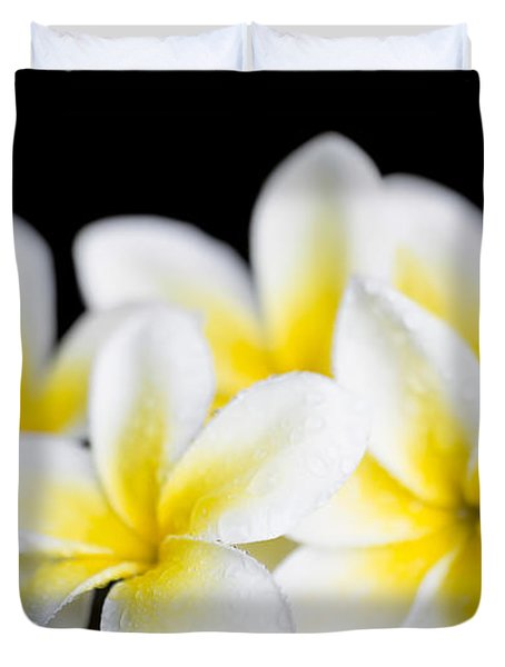 Duvet Cover featuring the photograph Plumeria Obtusa Singapore White by Sharon Mau