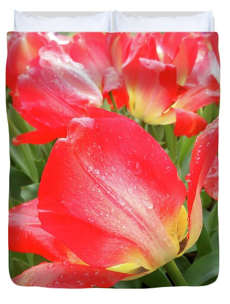 Sun Lights Tulips After Spring Rain Duvet Cover
