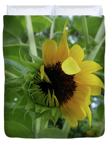 Sunflower Rising Duvet Cover