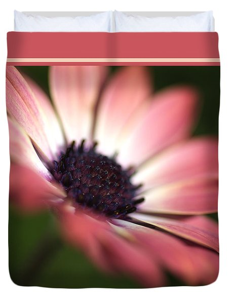 Beautiful Rich African Daisy Zion Red Flower Duvet Cover