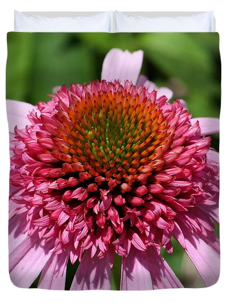 Pink Coneflower Close-up Duvet Cover
