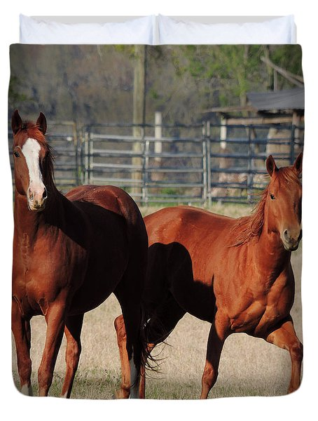 Happy Horses Hoofin-it Duvet Cover by Kim Pate