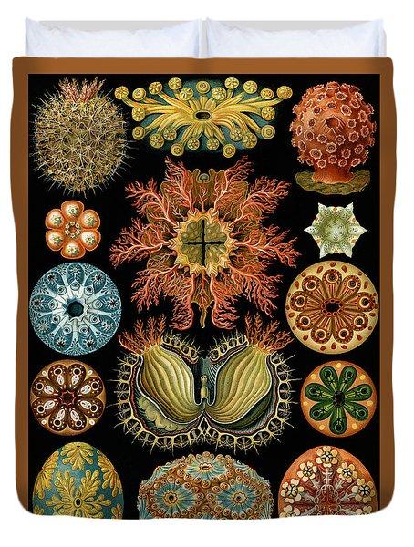 Ascidiae Duvet Cover