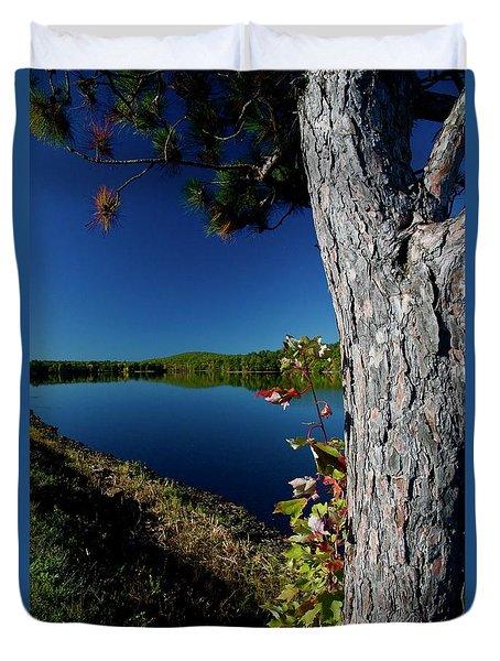 Ashley Reservoir Duvet Cover by Jim Gillen