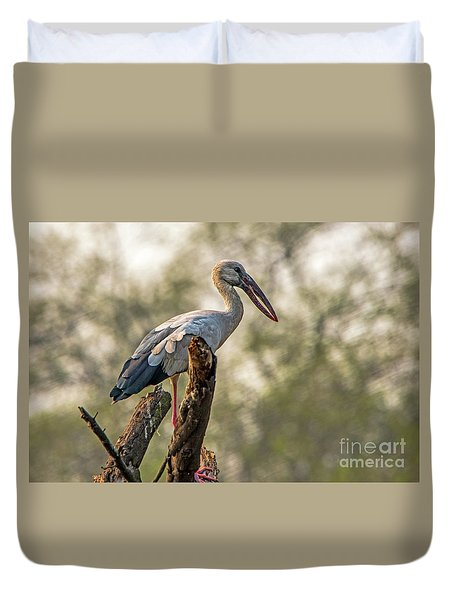 Asian Openbill Duvet Cover