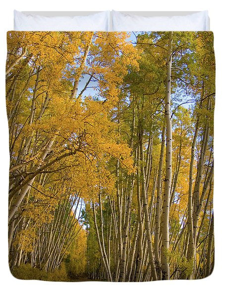Duvet Cover featuring the photograph Aspen Alley by Steve Stuller