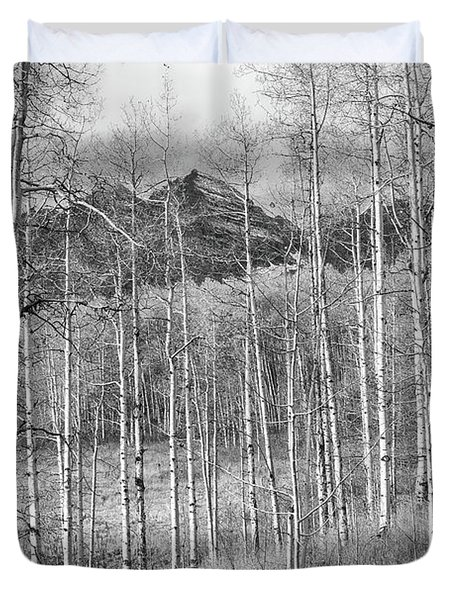 Duvet Cover featuring the photograph Aspen Ambience Monochrome by Eric Glaser