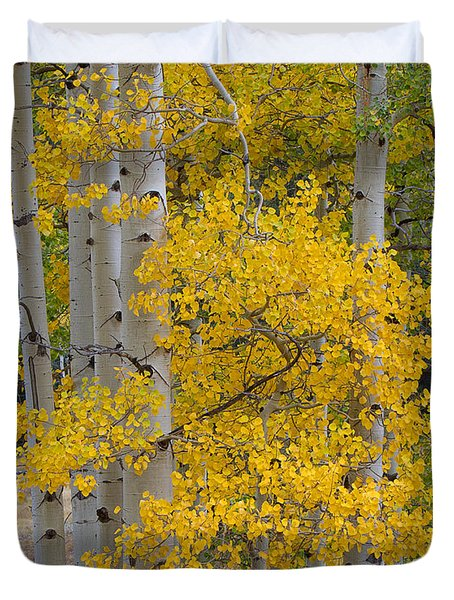 Aspen Bouquet Duvet Cover