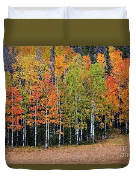 Aspen Color Duvet Cover