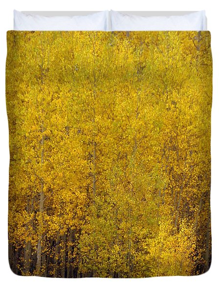 Aspen Fall 2 Duvet Cover