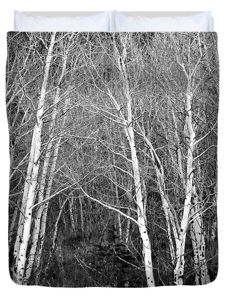 Aspen Forest Black And White Print Duvet Cover