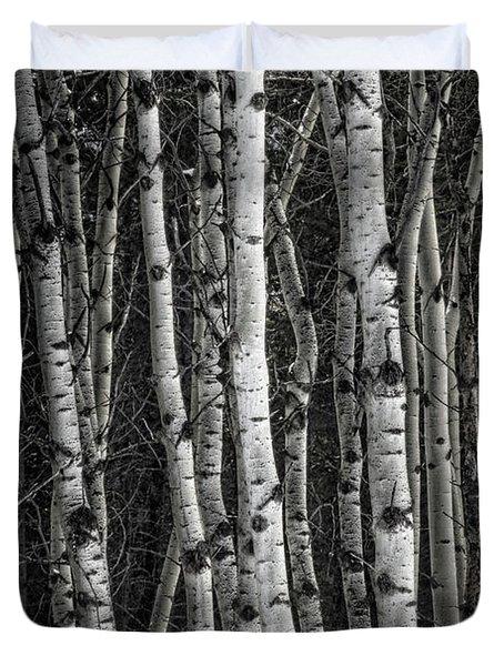 Aspen Forest IIi Duvet Cover
