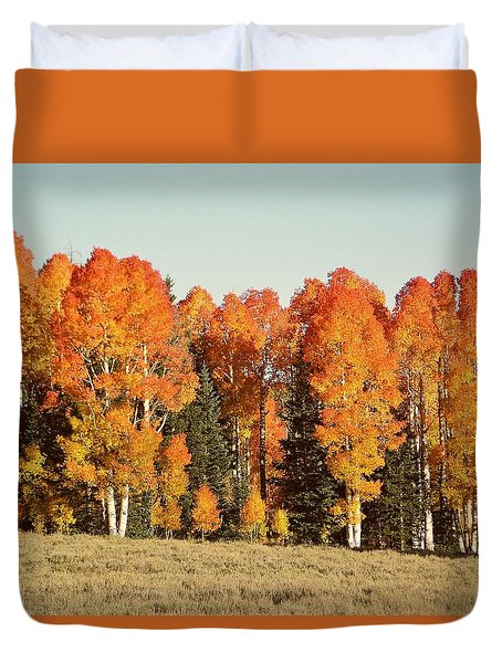 Aspen Forest In Autumn Duvet Cover
