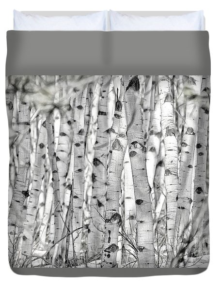 Aspen Forest Iv Duvet Cover