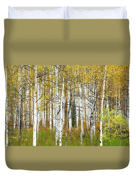 Aspen Forest Panoramic Duvet Cover