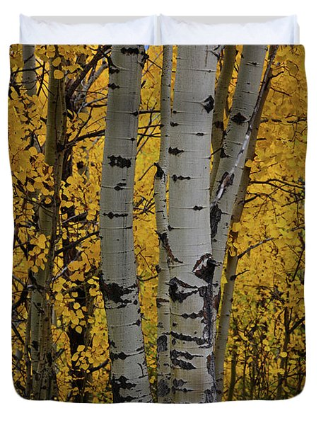 Aspen Golden Duvet Cover