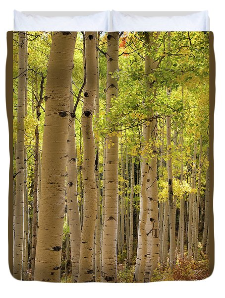 Duvet Cover featuring the photograph Aspen Grove by Dana Sohr