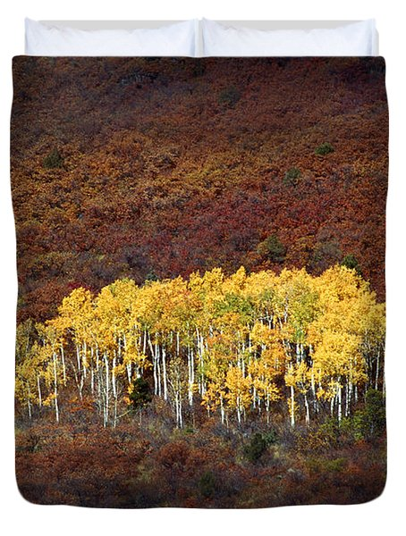 Aspen Grove Duvet Cover by Rich Franco