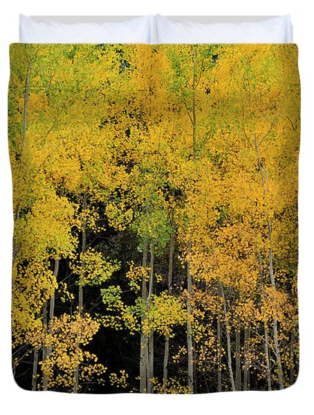 Duvet Cover featuring the photograph Aspen Haven  by Ron Cline