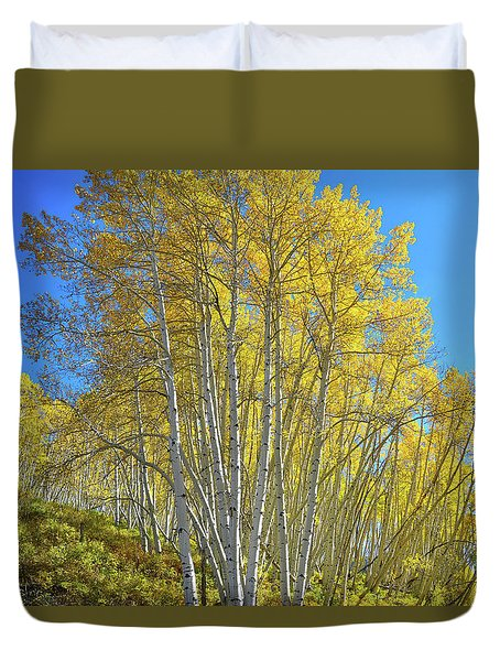 Duvet Cover featuring the photograph Aspen Lane by Ray Mathis